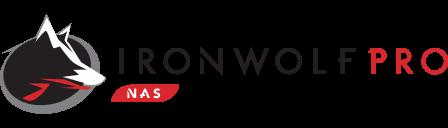 Disque dur pour les NAS Professionnels Seagate Iron Wolf Pro